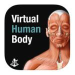 virtual human body